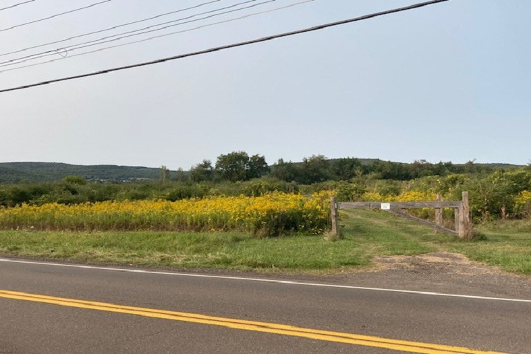 Hickory Grove Road, Big Flats, NY - Available Land For Lease
